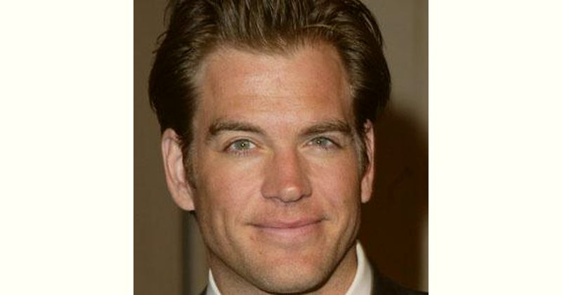 Michael Weatherly Age and Birthday